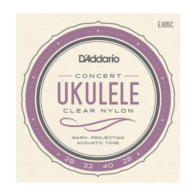 EJ65C Pro-Arté Custom Extruded Ukulele, Concert