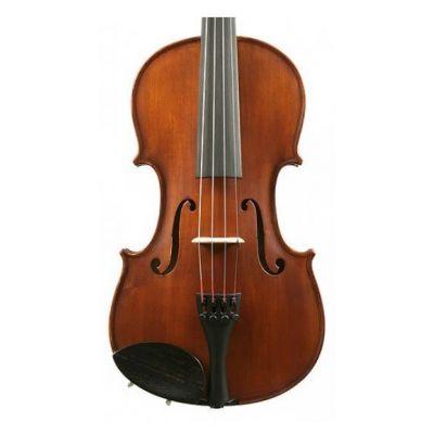 Gliga II Dark Antique 4/4 Violin Outfit